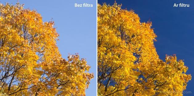 Kam vajadzīgs polarizācijas filtrs?