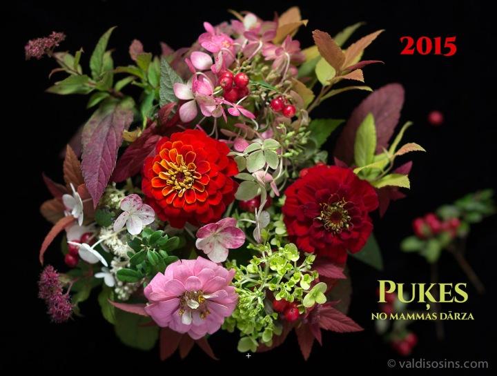 Pukes_2015_vāks