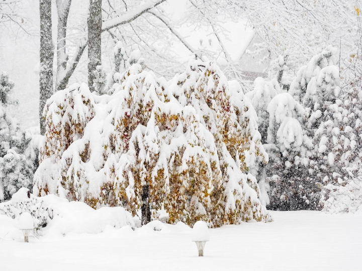vo_040020-sniegs
